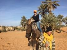 Riding camel, Merzouga, Moroccco