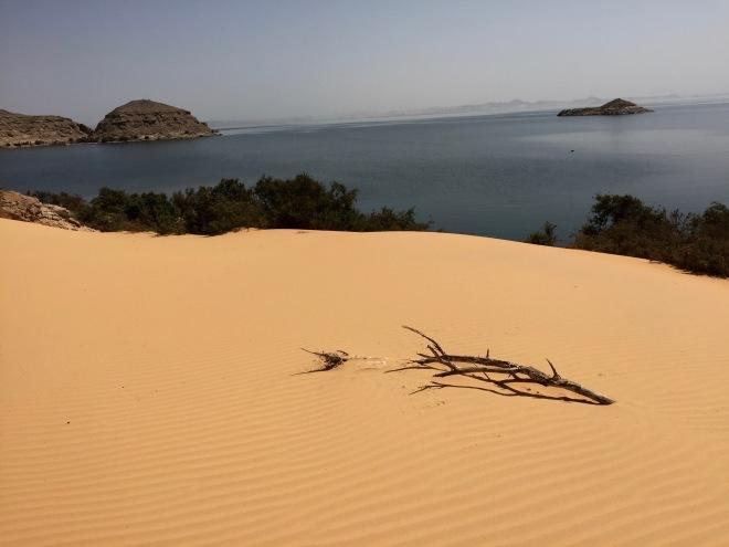 dune, lake, stick