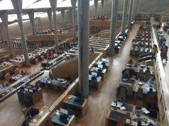 The Amazing Alexandria Library