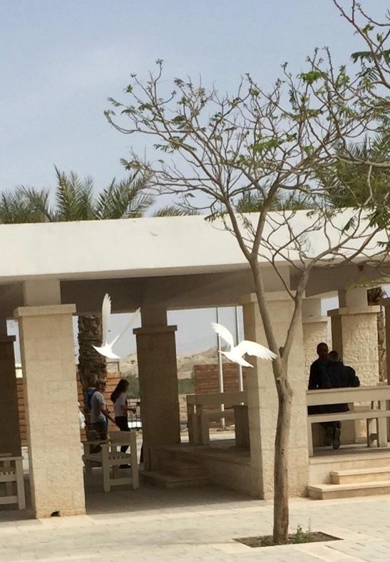 Flying Doves at Jordan Baptism Site (Israel Side)