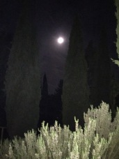 Full Moon over Tuscany Campground