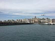 Galata Tower and Gull, On the Bosphorus, Istanbul