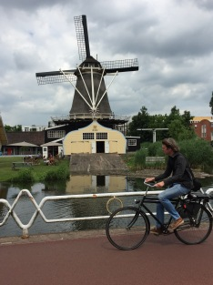 Windmill, Heron, and Bicyclist in Utrecht