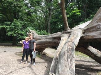 Carter, Mom, Hampstead Dead Tree